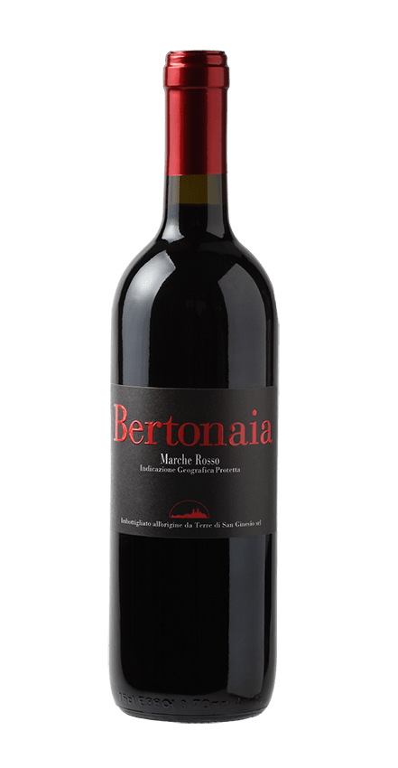 bottle wine bertonaia